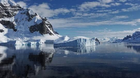 Biodiversità, CO2 ha trasformato l'Antartide 18mila anni fa