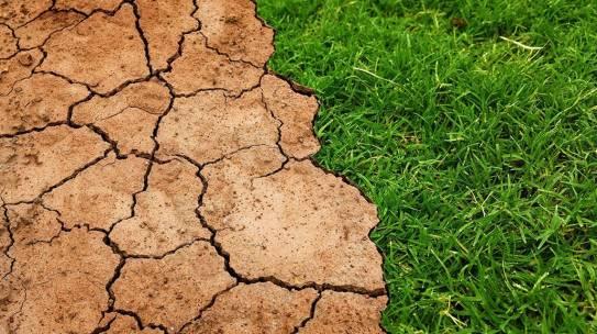 Cambiamento climatico, solo sei mesi per invertire la rotta: lo dice l'IEA