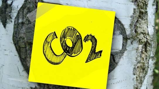CO2: emissioni zero in Italia, possibile secondo Greenpeace