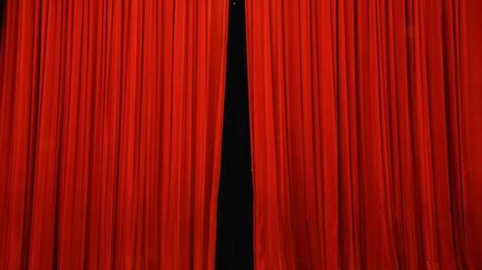 Il Teatro dell'Opera di Barcellona riapre: fra il pubblico solo piante